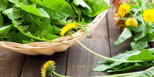 6 растений, которые удаляют лишнюю воду из организма